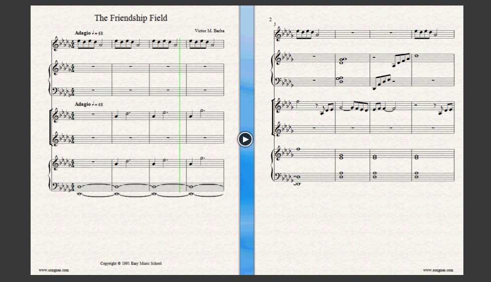 ID33043_The_Friendship_Field