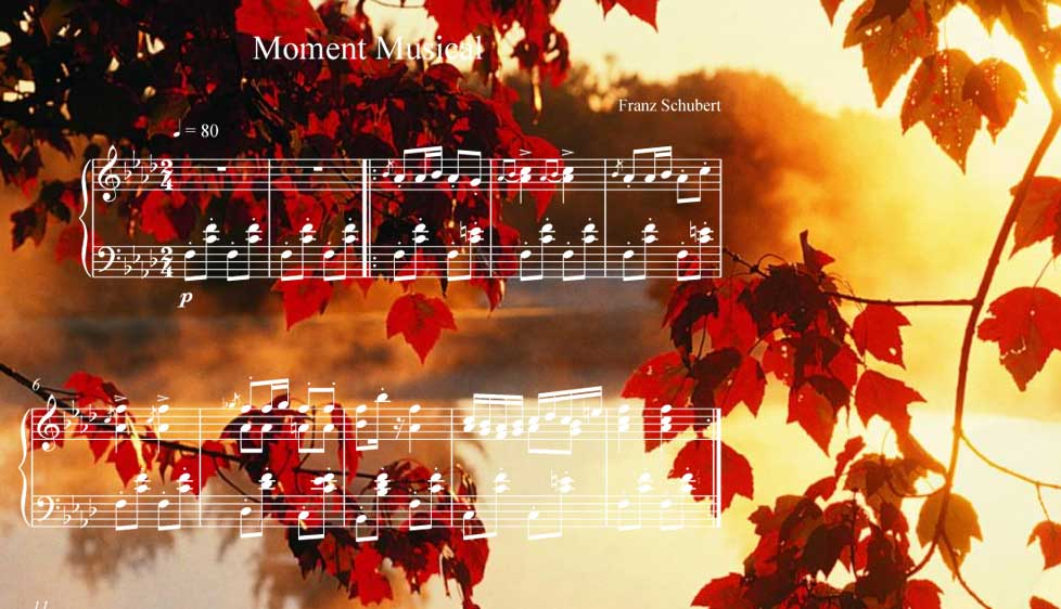 Momento Musical by Franz Schubert