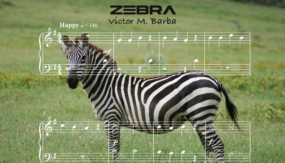 ID64131_Zebra