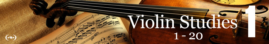 Violin Studies Main Banner