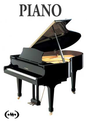 Learn to play piano in songnes.com with tutorials, exercises, scales and songs for the piano