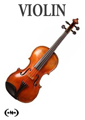 Learn to play violin in songnes.com with tutorials, exercises, scales and songs for the violin
